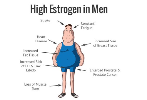 estrogen-in-men-estrogen-blockers